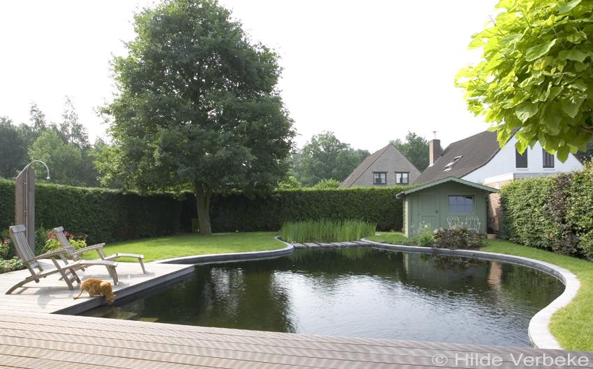 Zwemvijver aanleggen in tuin losse vorm u de mooiste zwembaden
