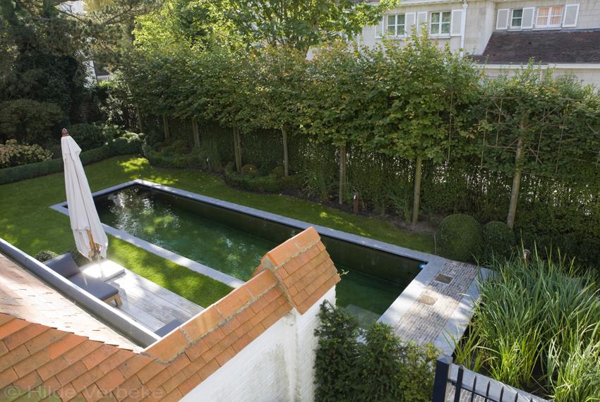 Biologisch zwembad aangelegd in mooie stadstuin de for Zwembad voor in de tuin met pomp