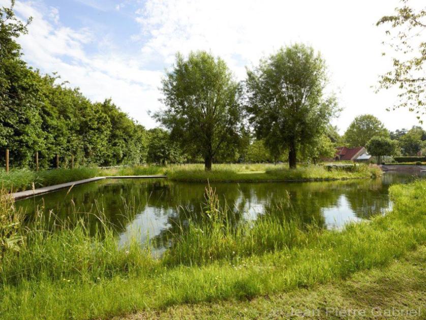 Landschappelijke zwemvijver met beplante filter for Kostprijs zwemvijver aanleggen