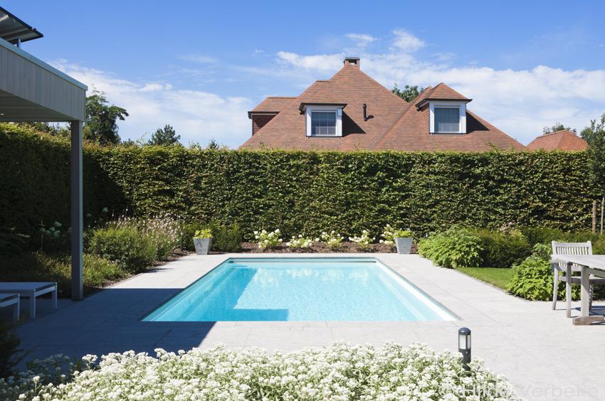 zwembad in mooie tuin omgeven door bloemenpracht