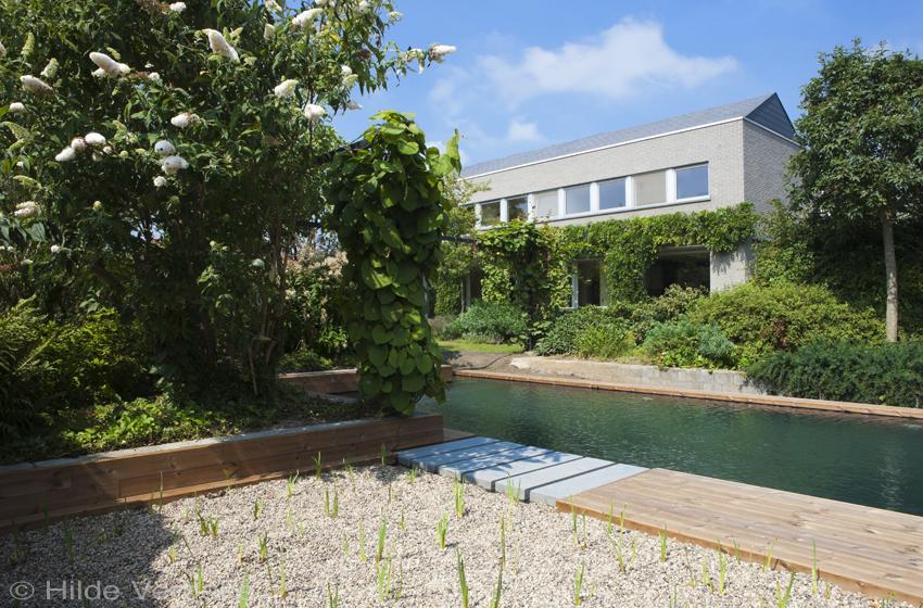 Een droom van een biologisch zwembad zwemvijver met grijze liner de mooiste zwembaden - Terras van droom ...