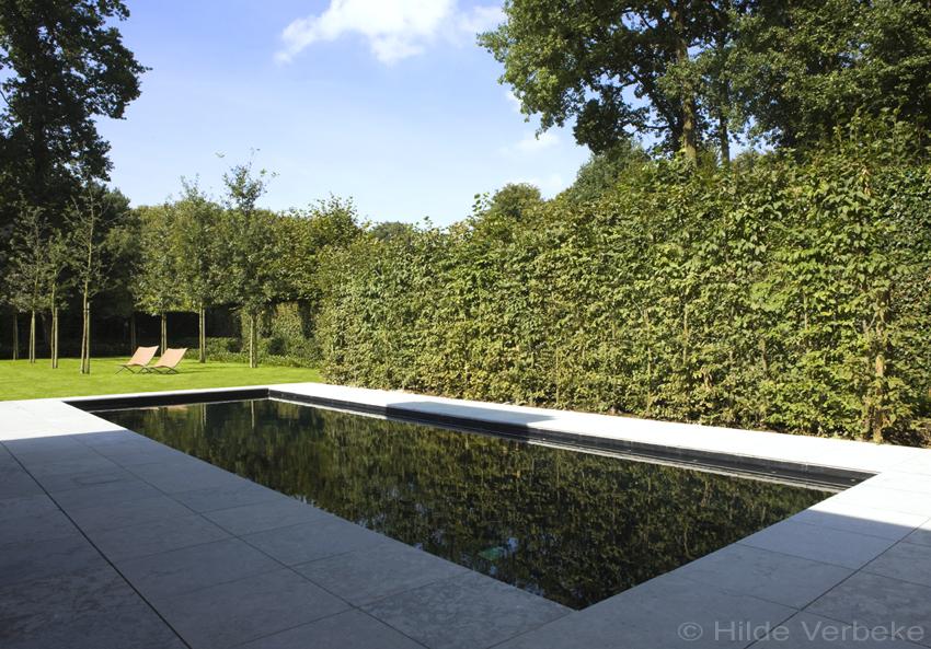 Betonzwembad met zwarte liner skimmer zwembad bij minimalistische woning de mooiste zwembaden - Zwarte voering voor zwembad ...