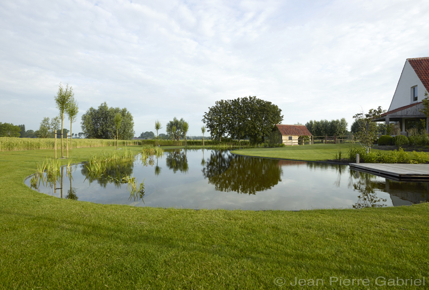 prachtige zwemvijver in de polders zwemvijver aanleggen