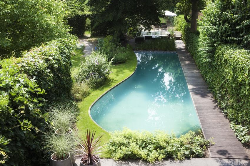 kostprijs zwemvijver met organische vorm bekleed met