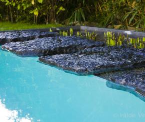 Moderne zwemvijver bekleed met polyester, biologisch zwembad bouwen