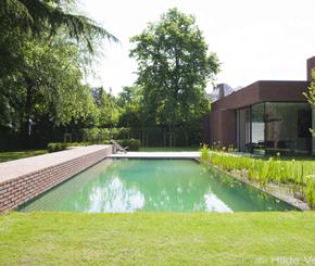 renovatie bestaand zwembad naar zwemvijver