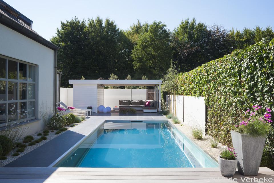 Nieuw Inox zwembad aanleggen in kleine tuin met lounge ruimte ‹ De BC-67