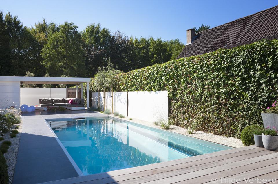 Inox zwembad aanleggen in kleine tuin met lounge ruimte for Tuin met zwembad
