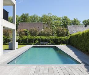 Betonnen skimmer zwembad aangelegd door Natural Pools