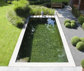Zwemvijver aangelegd door Cools tuinaanleg, zwemvijver strakke vorm