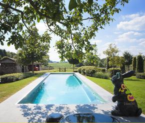 inox zwembad aangelegd in landelijke tuin, Nouv'eau zwembaden