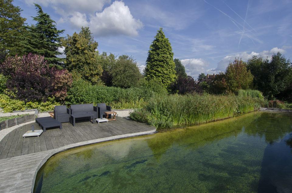 Hybride zwemvijver ingewerkt in het landschap en met verschillende