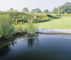 openbare zwemvijver in wellness, ecoworks