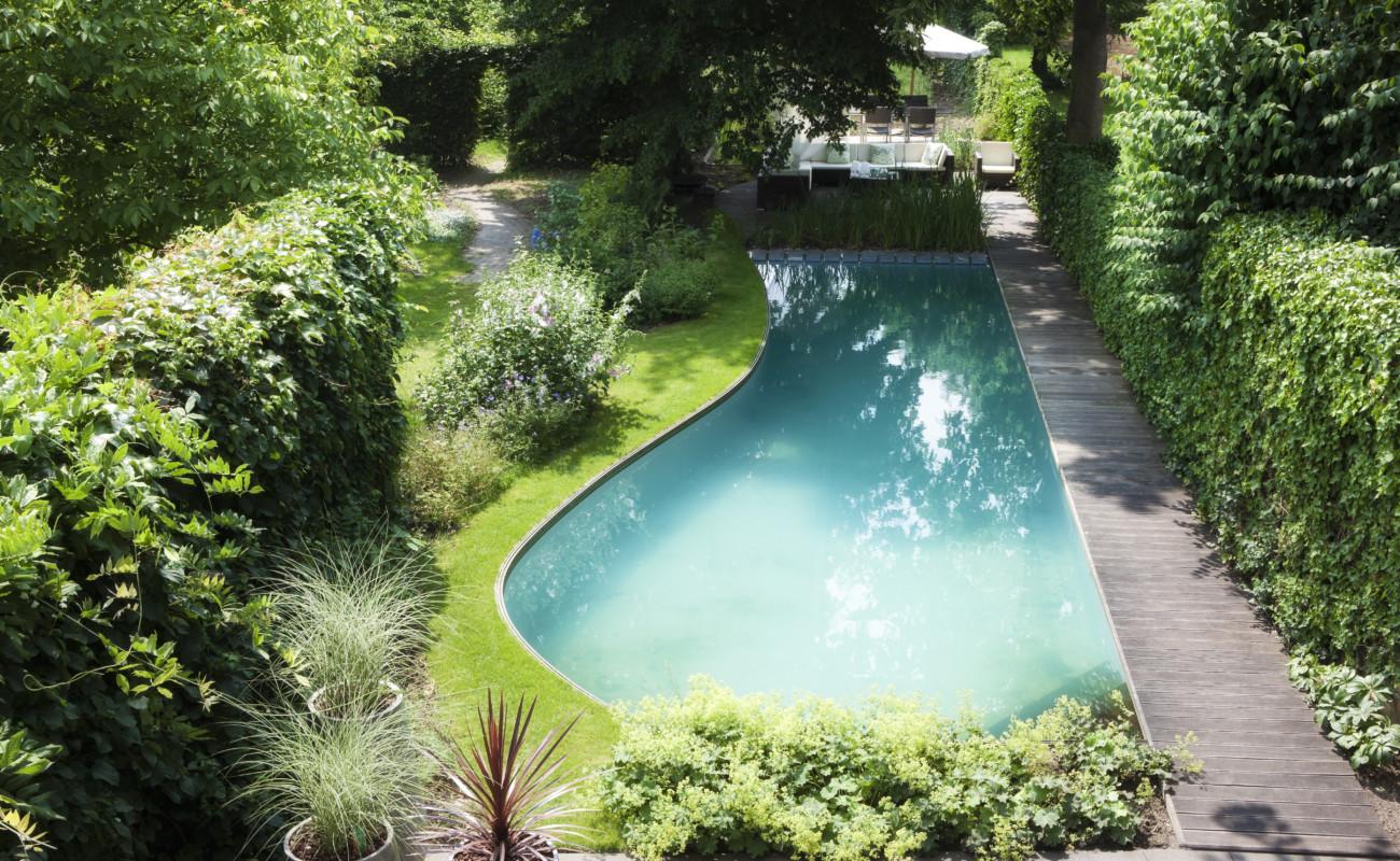 Kostprijs zwemvijver met organische vorm bekleed met for Kostprijs zwembad aanleggen