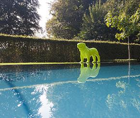 infini zwembad aangelegd door Swimtec, liner zwembad