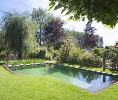 zwemvijver met organische vorm aangelegd door  Aqua-art