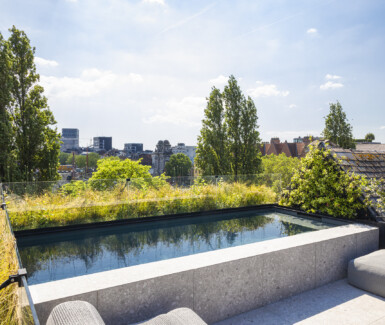 rooftop zwembad aangelegd door BORD DE MER biedt zicht op Antwerpen-Zuid!