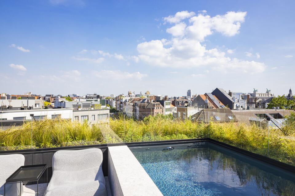 rooftop8