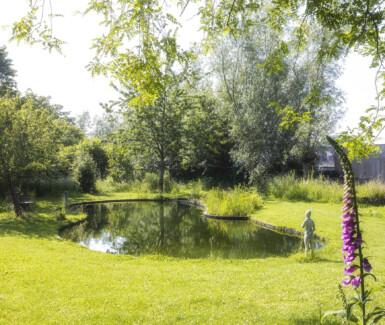 Deze zwemvijver met organische vorm werd aangelegd in een wilde tuin door Bebouwen en Bewaren